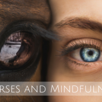 Horses and Mindfulness
